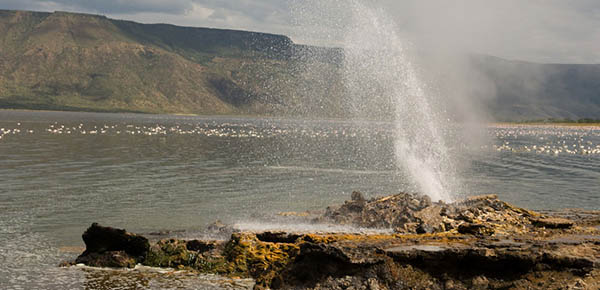 Lake_Bogoria_National_Reserve