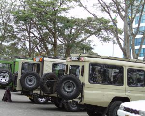 Borderless-Tours-Sarafis-vehicles-2