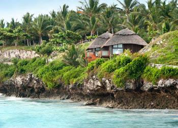 Melia-Zanzibar2