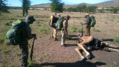 Serengeti Back packing 2