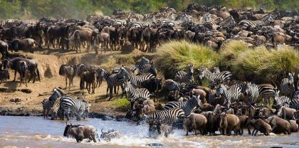 great migration 5 (2)